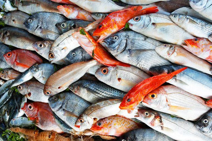 mangiare pesce-fresco a Venezia